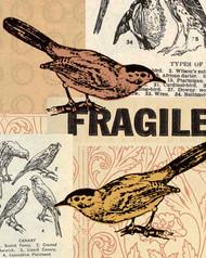 Art Classics Fragile