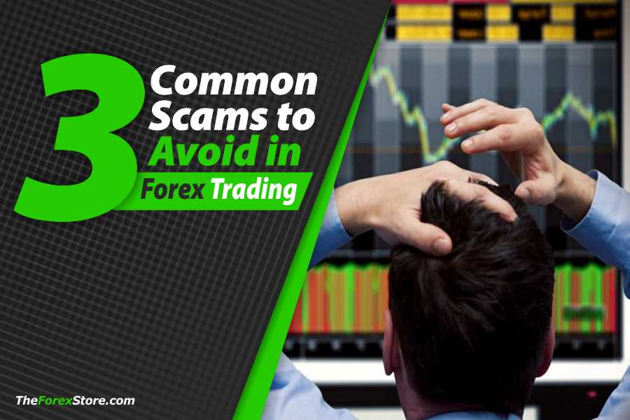 Trading forex scams with pictures francis investment counsel wisconsin