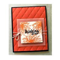 Orange Thinking of You