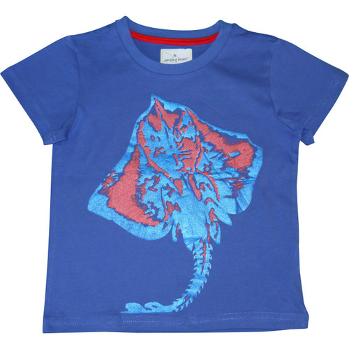 Boys Blue Stingray T Shirt.