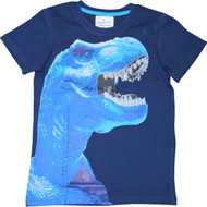 Boys Blue Dinosaur T-Shirt.