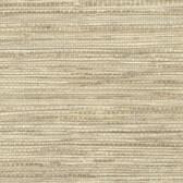 Contemporary Beyond Basics Tapis Faux Grasscloth Beige Wallpaper 420-87085