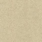 Contemporary Beyond Basics Notion Texture Fallow Brown Wallpaper 420-87150