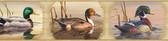 BBC48521B Winning Cream Waterfowl Portrait Blocks Border
