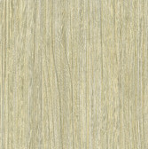 WD3031-Derndle Birch Faux Plywood Wallpaper