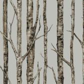 Urban Retreat The Birches Dove Wallpaper LL4757