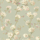 120th anniversary AV2833 CHERRY BLOSSOM wallpaper