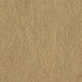 Sculptured Surfaces Caspano Peanut Wallpaper LS6111RD
