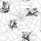 ZB3272 Boys Will Be Boys Spiderman Web Wallpaper