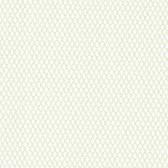 Dollhouse VIII 487-68830 Jayne Green Trellis Mini wallpaper