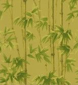 Echo Design 566-43981 Paradise Beige Bamboo wallpaper