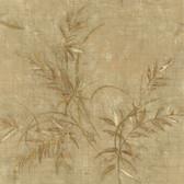 436-42703 - Kazumi Olive Bamboo Texture wallpaper