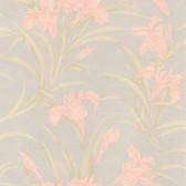 436-66602 - Vivianne Peach Iris Floral  wallpaper