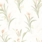 436-66605 - Edith Peach Satin Lily wallpaper