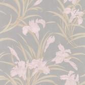 436-66624 - Vivianne Grey Iris Floral  wallpaper
