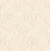 Fans Cream Texture  Contemporary Wallpaper