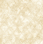 Mercury Glass Gold Distressed Metallic
