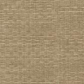 Texture Light Brown Woven