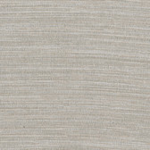 Texture Grey Zoster