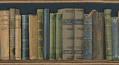 Reynolds Blue Books