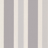 Orbit Grey Stripes