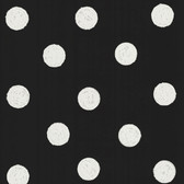 Lunette Black Polka Dot