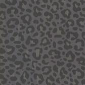 Parallax Charcoal Leopard