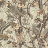 Sawgrass Fog Camo Forest Wallpaper