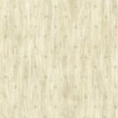 Heron Olive Stencil Starburst Wallpaper