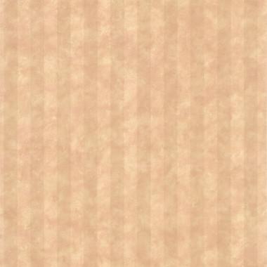 Stria Taupe Stripe