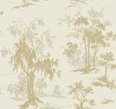 METALLICSCENIC GF0765 by York wallcovering, decorate your wall with YorkÌ¥ÌÓÌ¥_Ì¥åâÌÇåäÌ¥ÌÓÌ¥__Ì¥ÌÓÌ¥_Ì¥ÌÓ_Ì¥ÌÓÌÇ̢̥åâÌÇås lovely wallpapers