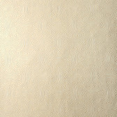 Candice Olson Shimmering Details DE8843 Hourglass Pearl Wallpaper