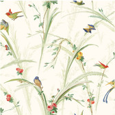 White Meadow Lark Wallpaper