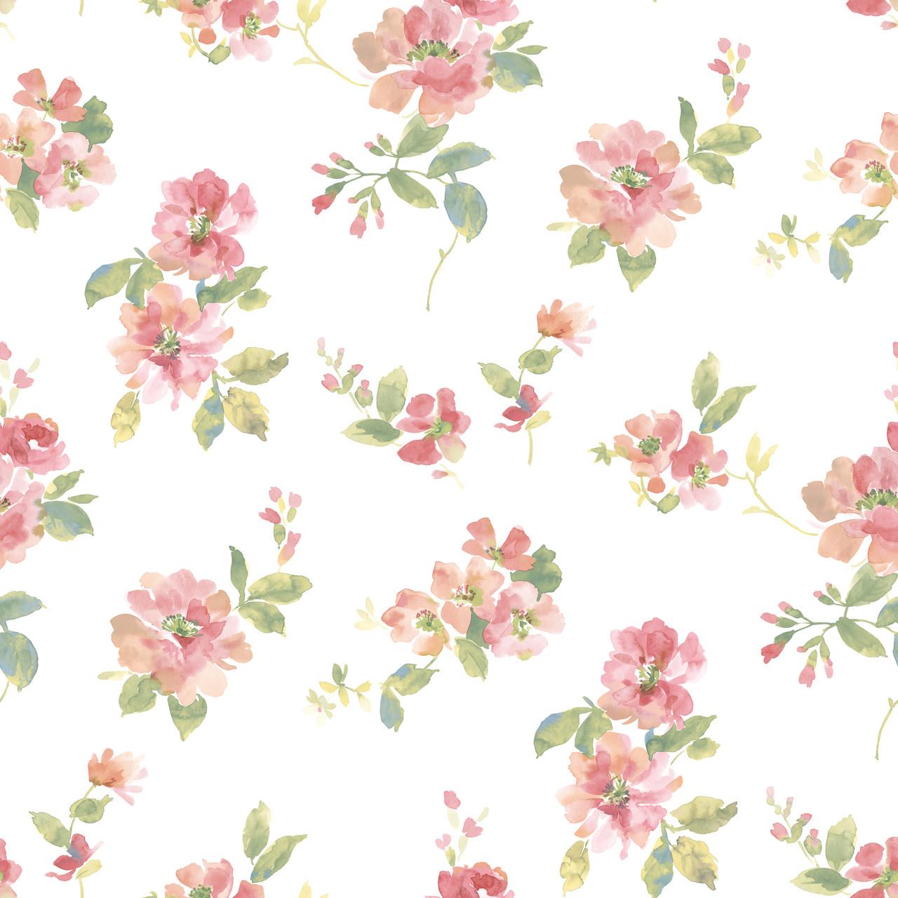 Captiva Peach Watercolor Floral Dlr54592 Wallpaper