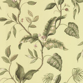 Eldora Green Evening Tropics Leaves Wallpaper