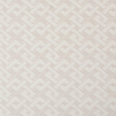 Y6220505 Trellis A-Go-Go Wallpaper - White