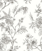 2763-24237 Jessamine Grey Floral Trail Wallpaper
