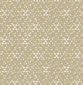 2793-24716 Blissful Honey Harlequin Wallpaper