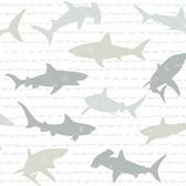 A Perfect World KI0565 - Shark Charades Wallpaper Neutral