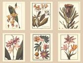 AF1933-Ashford Toiles Botany Wallpaper