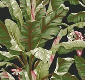 Ashford House AT7071 - Tropics Banana Leaf Wallpaper Dark Green