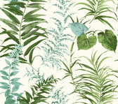 Coastal Calm CM3352 - Palms Wallpaper Green