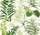 Coastal Calm CM3353 - Palms Wallpaper White