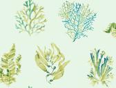 Coastal Calm CM3358 - Seaweed Wallpaper Aqua