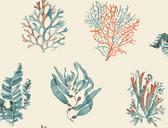 Coastal Calm CM3360 - Seaweed Wallpaper Cream