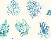 Coastal Calm CM3361 - Seaweed Wallpaper White