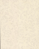 Delicate Scroll Wallpaper TN0037 - Almond