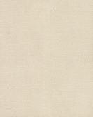 Raised Dots Wallpaper TN0042 - Pearl