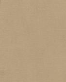 Raised Dots Wallpaper TN0044 - Brown