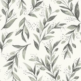 Magnolia Home PSW1003RL - Olive Branch Peel and Stick Wallpaper Charcoal
